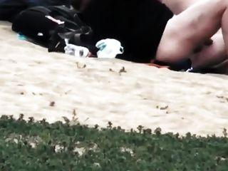 समुद्र तट में बकवास