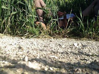 एक गेहूं के खेत में क्रॉन्ड्रेसर वांकिंग