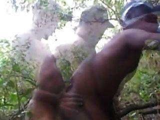 जंगलों में बोटीन बोनाई