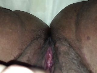squirting बिल्ली