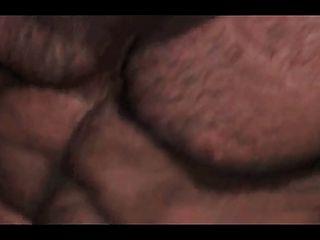 मांसपेशी भालू संभोग मौसम