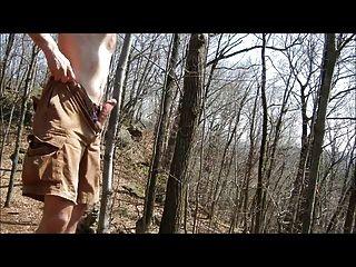 जैकफ वृद्धि: जंगल में सह 1