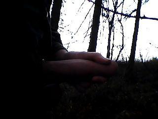 मुझे लकड़ी में, Iich im wald