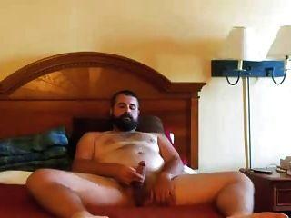पजा डे ओसो बरबदो दाढ़ीदार भालू झटके में बिस्तर