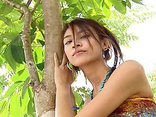 एशियाई गुप्त उद्यान 09