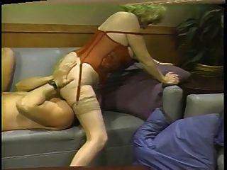 किटी लोमड़ी सोफे पर विभिन्न पदों