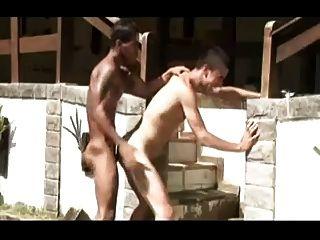 सेक्सys latinos