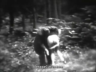 तेजस्वी कुतिया जंगल में मज़ा है (1 9 30 के दशक पुराने)