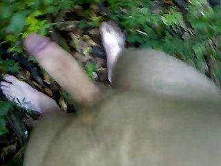 मरोड़ते, कराहना और शूटिंग 2 जंगल में सह