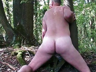 जंगल में प्रेमी कमबख्त व्यायाम