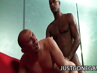 पेशी संवर्धन एंटोनियो मोरेनो अपने गधा में एक काले डिक चाहता है