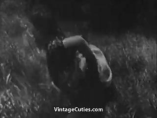 हरा घास का मैदान में असभ्य सेक्स (1 9 30 का विंटेज)
