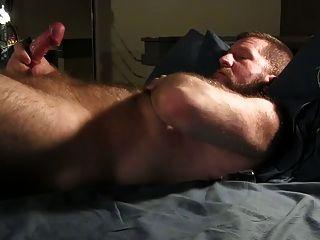 भालू अपने मुर्गा स्ट्रोक