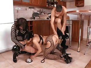 रसोईघर में गर्दन में दो बिल्ली के बच्चे गड़बड़