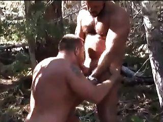 जंगल में चूसने