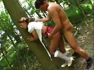 जंगल में काठी पार्कर।