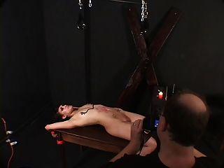 छोटे स्तन आकर्षक और उसके मालिक द्वारा मोम के साथ छेड़ा