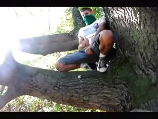 एक ग्रीष्म दिवस पर एक पेड़ में एक wank होने :)