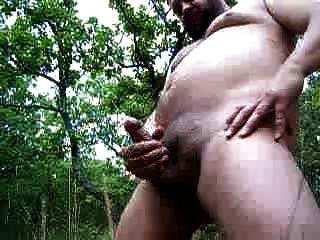 जंगल में कमिंग भालू