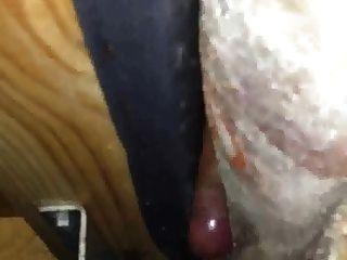 सोफे के बीच कमबख्त और सह