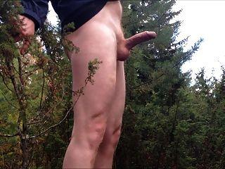 जंगल में मुश्किल