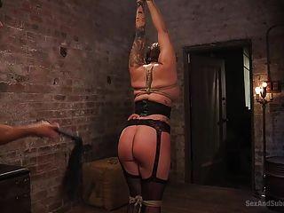 टोरी पसंदीदा वेश्या है