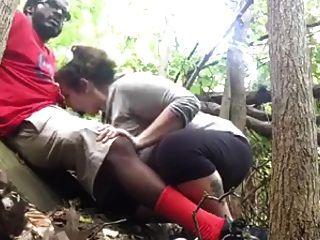 जंगल में बीबीसी बीजे