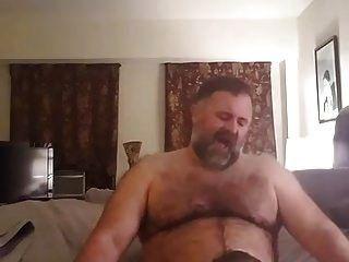 महान भालू चूसने