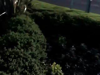 एक व्यस्त चौराहे के पास पेशाब करके दिया गया शून्य बकवास