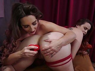 बेला रोसी ने सवाना लोमड़ियों को गुदा जंभाई और फुहार मारने के लिए प्रस्तुत किया