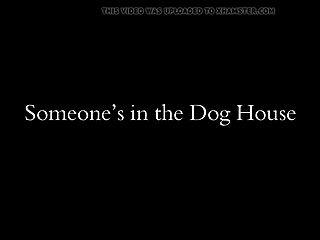 बैरोनेस एस्सेक्स के साथ कुत्ते का हाथ